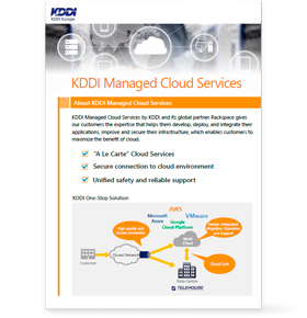 ManagedCloudServices_Leaflet